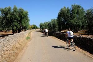 BikeInMasseria20130828-2381